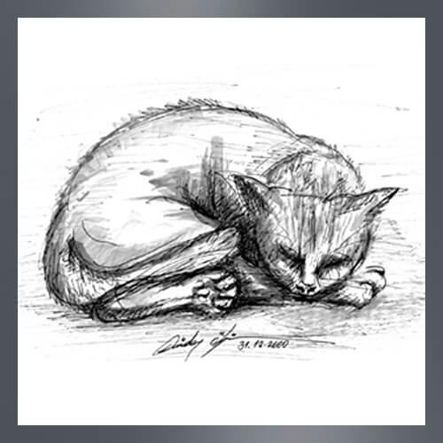 Zeichnung, Katzenzeichnung